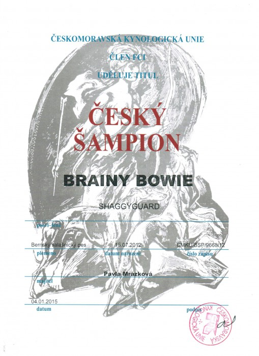cesky-sampion-4.1.2015.jpeg